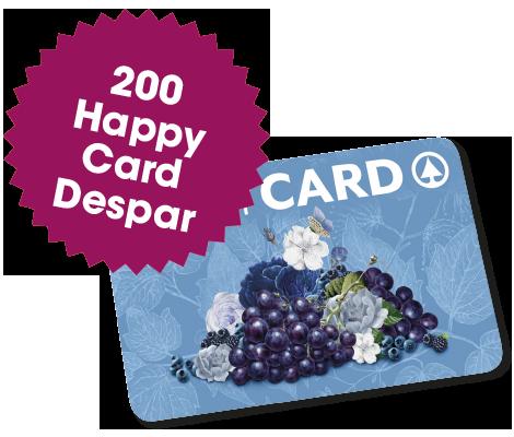 200 Happy Card Despar del valore di 25€